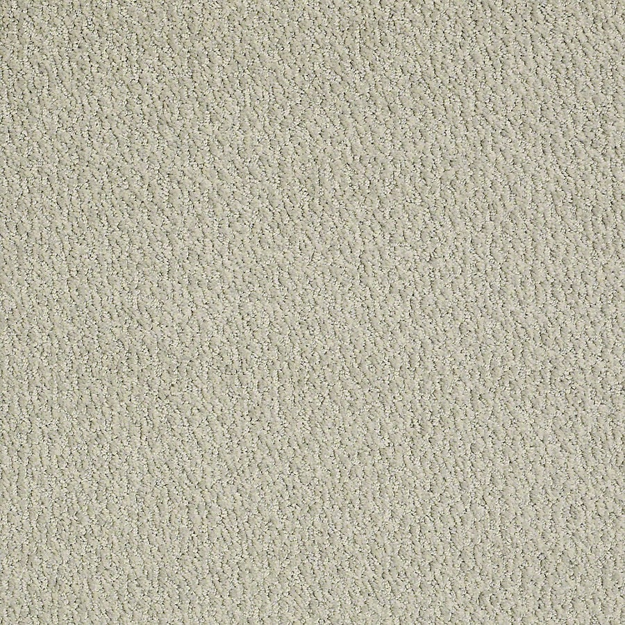 STAINMASTER PetProtect Bianca 12-ft W x Cut-to-Length Lucky Berber/Loop Interior Carpet