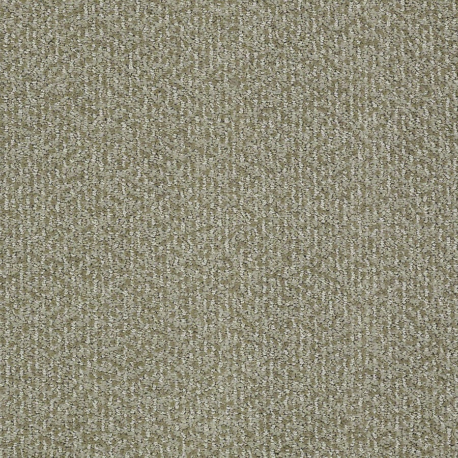 STAINMASTER PetProtect Bianca 12-ft W x Cut-to-Length Maggie Berber/Loop Interior Carpet