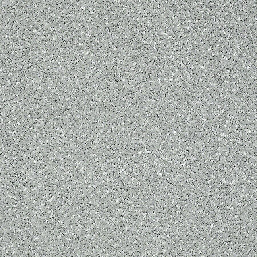 STAINMASTER PetProtect Bianca 12-ft W Barker Berber/Loop Interior Carpet