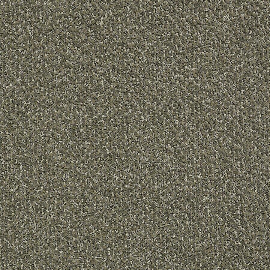 STAINMASTER PetProtect Bianca 12-ft W Shake Berber/Loop Interior Carpet