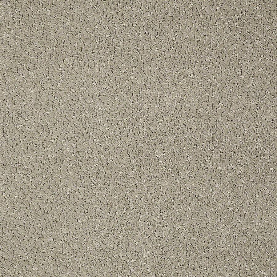 STAINMASTER Petprotect Bianca Hank Berber/Loop Interior Carpet