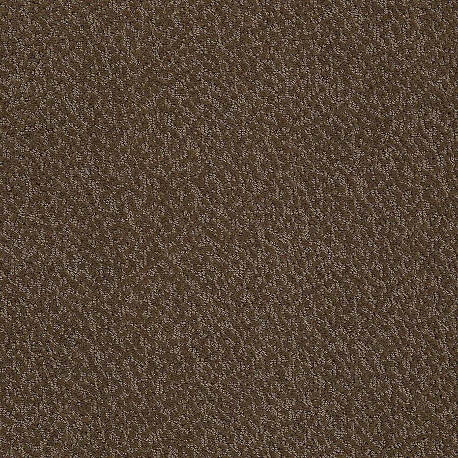 STAINMASTER PetProtect Bianca Coco Berber/Loop Interior Carpet