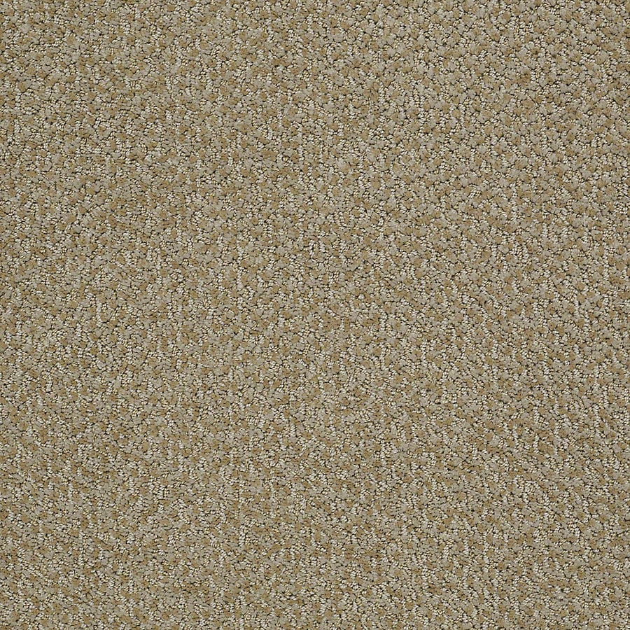 STAINMASTER PetProtect Bianca 12-ft W x Cut-to-Length Collie Berber/Loop Interior Carpet