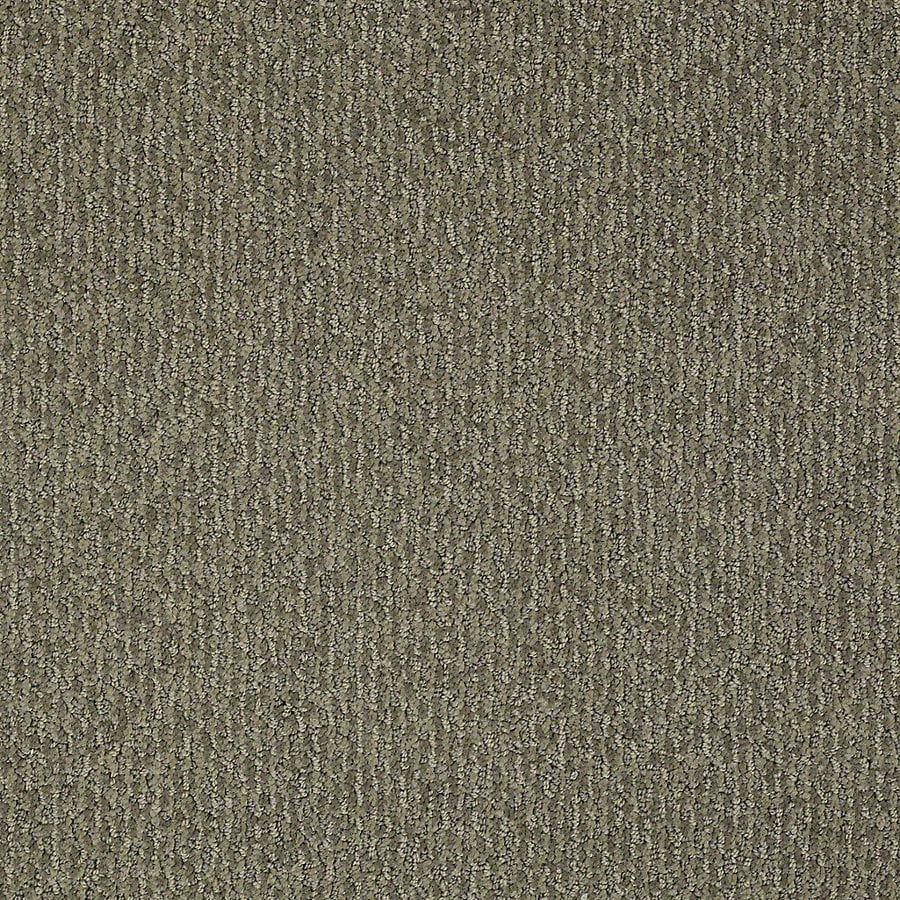 STAINMASTER PetProtect Bianca 12-ft W x Cut-to-Length Husky Berber/Loop Interior Carpet