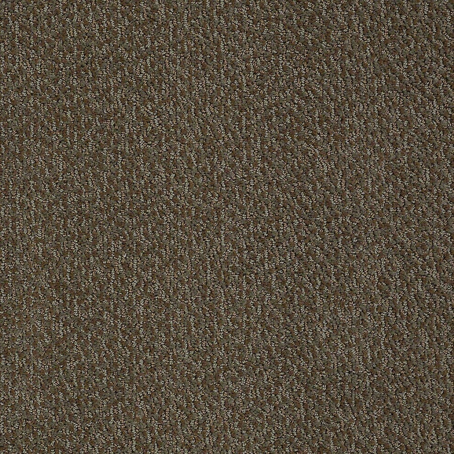 STAINMASTER PetProtect Bianca 12-ft W x Cut-to-Length Penny Berber/Loop Interior Carpet