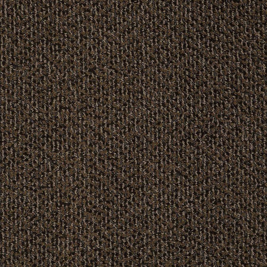 STAINMASTER PetProtect Bianca Sparky Berber/Loop Interior Carpet