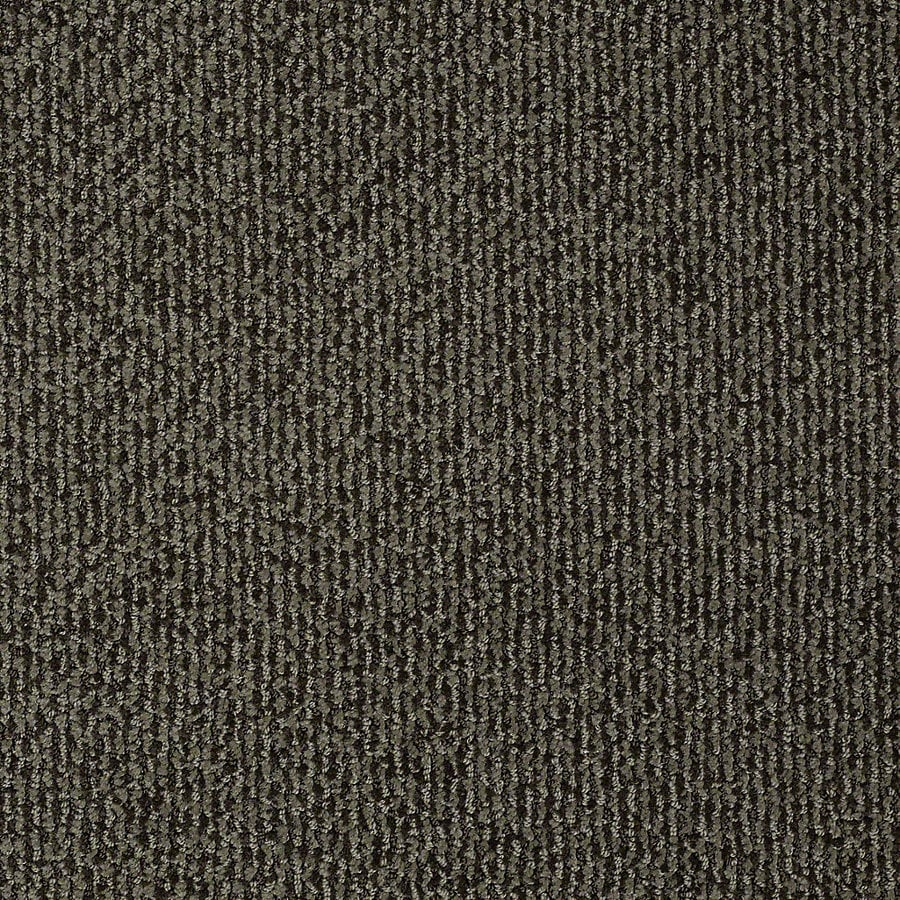 STAINMASTER PetProtect Bianca 12-ft W x Cut-to-Length Toby Berber/Loop Interior Carpet