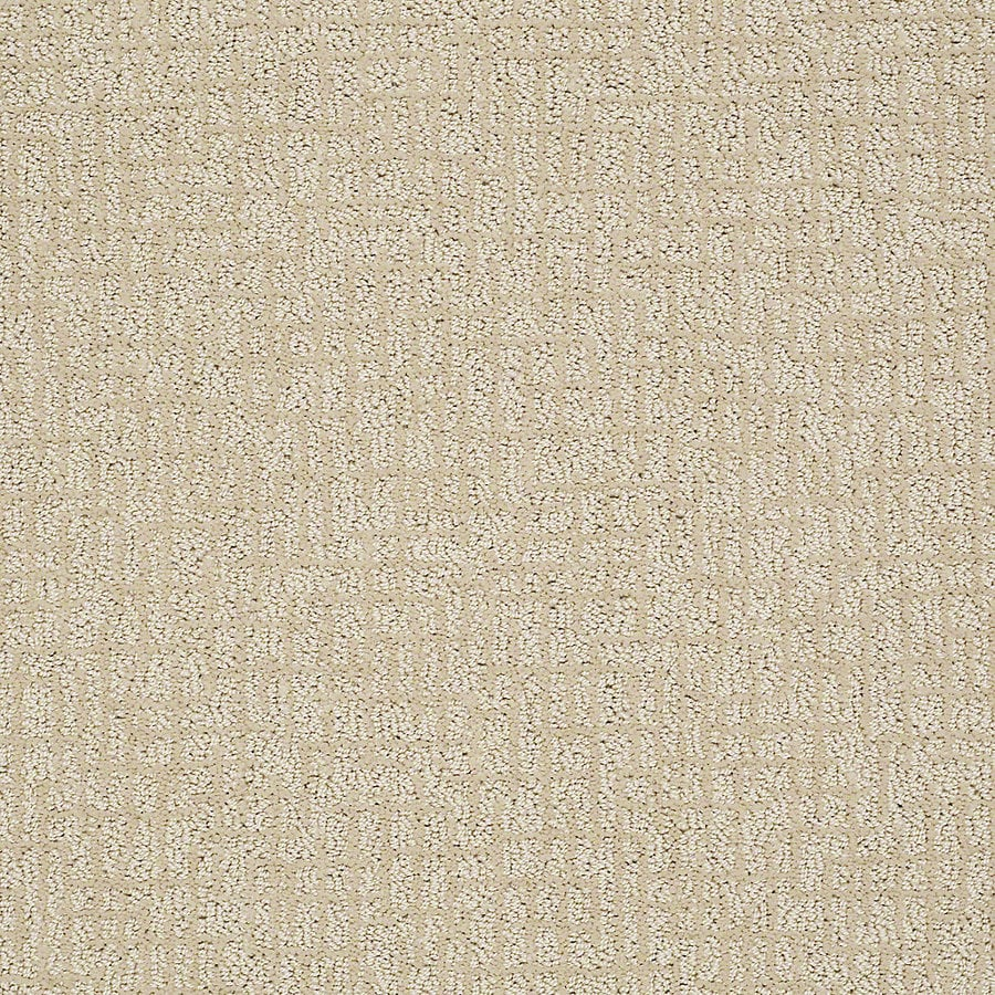 STAINMASTER PetProtect Bitzy 12-ft W x Cut-to-Length Duke Berber/Loop Interior Carpet