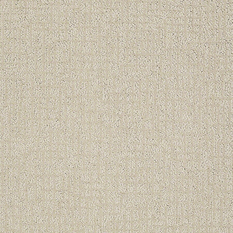 STAINMASTER PetProtect Bitzy 12-ft W x Cut-to-Length Ruff Berber/Loop Interior Carpet