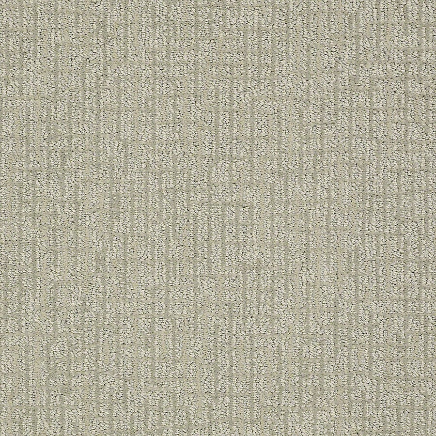 STAINMASTER PetProtect Bitzy 12-ft W Poodle Berber/Loop Interior Carpet
