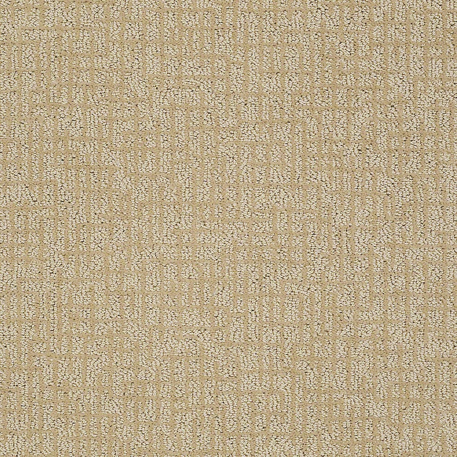 STAINMASTER PetProtect Bitzy 12-ft W x Cut-to-Length Spike Berber/Loop Interior Carpet