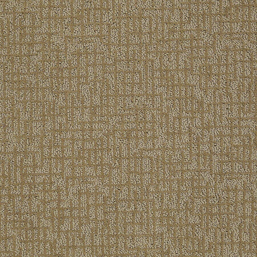STAINMASTER PetProtect Bitzy 12-ft W x Cut-to-Length Rufus Berber/Loop Interior Carpet