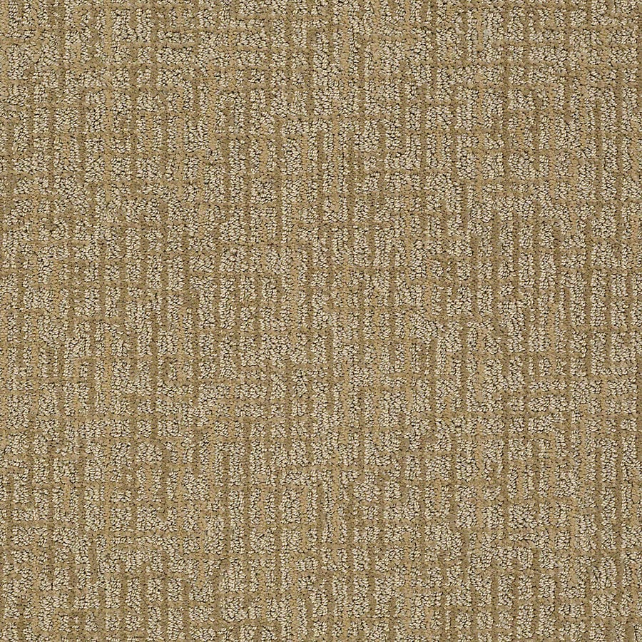 STAINMASTER Petprotect Bitzy Bubba Berber/Loop Interior Carpet