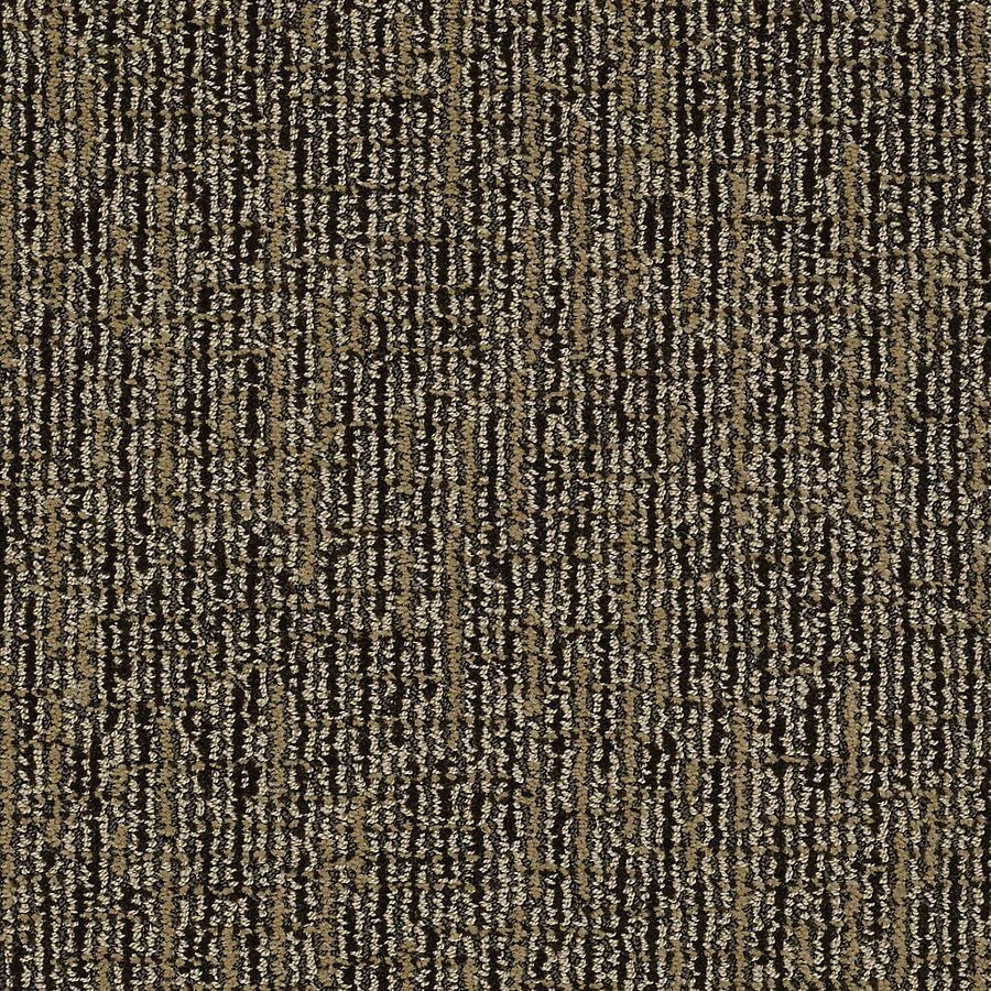 STAINMASTER Petprotect Bitzy Wagging Tail Berber/Loop Interior Carpet
