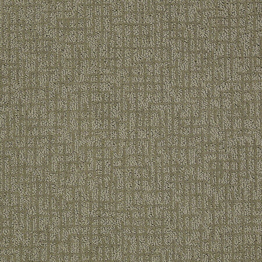 STAINMASTER PetProtect Bitzy 12-ft W x Cut-to-Length Pal Berber/Loop Interior Carpet