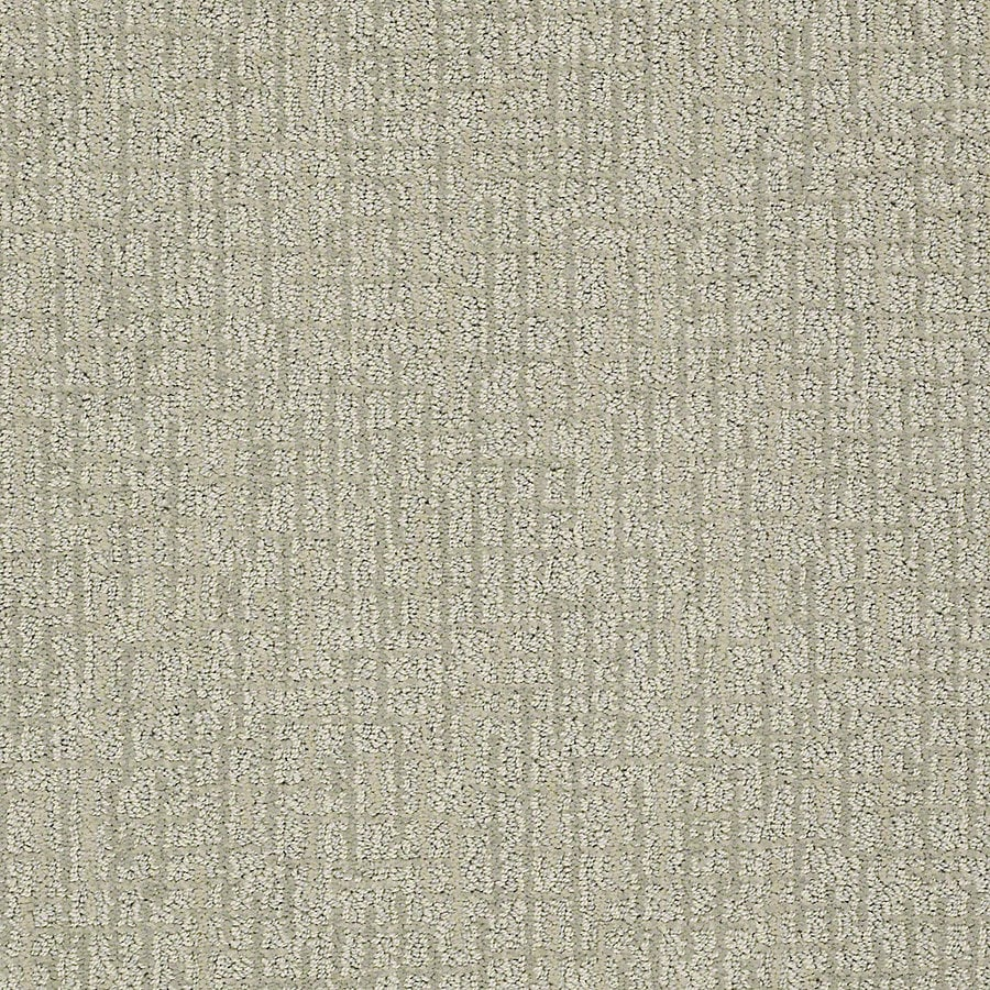STAINMASTER PetProtect Bitzy Lucky Berber/Loop Interior Carpet