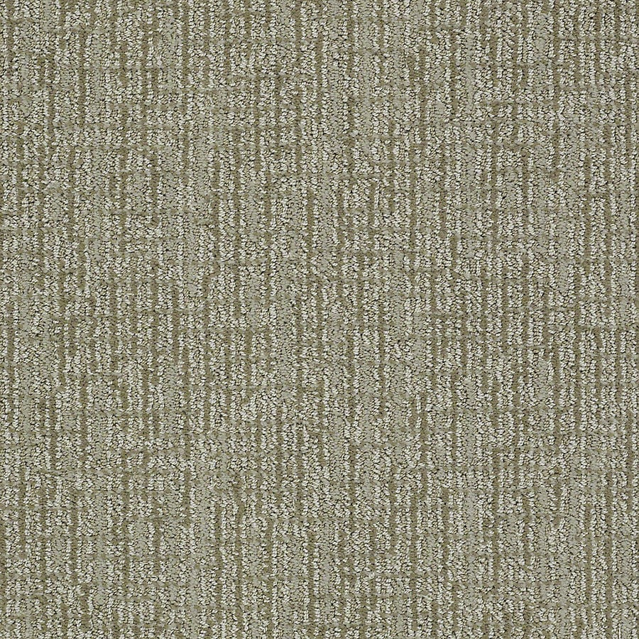 STAINMASTER PetProtect Bitzy Maggie Berber/Loop Interior Carpet