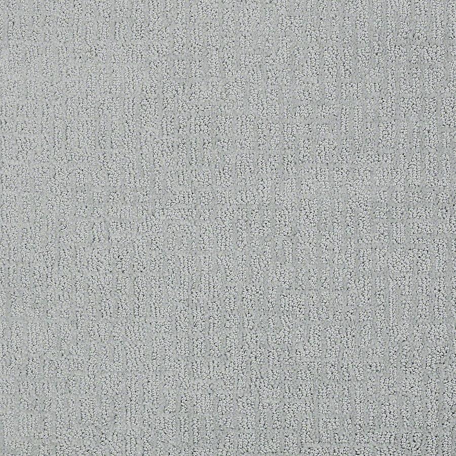 STAINMASTER Petprotect Bitzy Barker Berber/Loop Interior Carpet