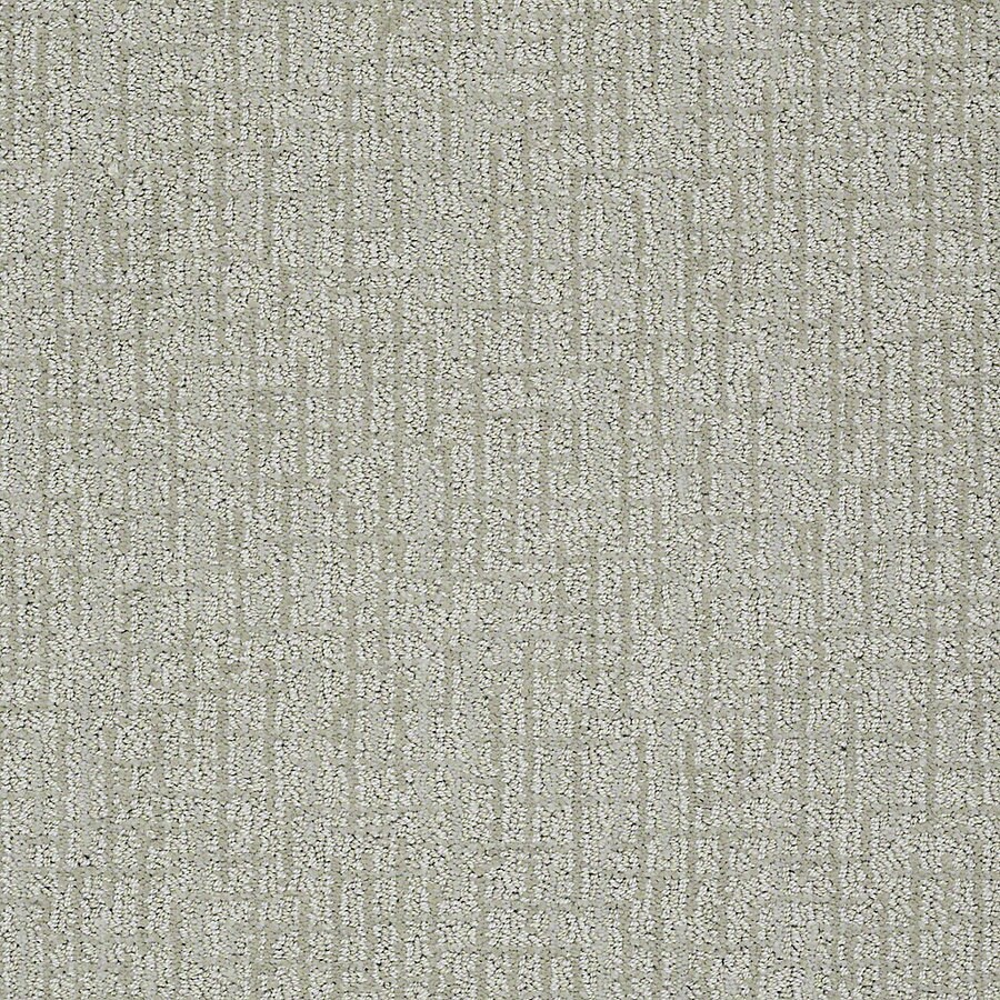 STAINMASTER PetProtect Bitzy 12-ft W x Cut-to-Length Milo Berber/Loop Interior Carpet