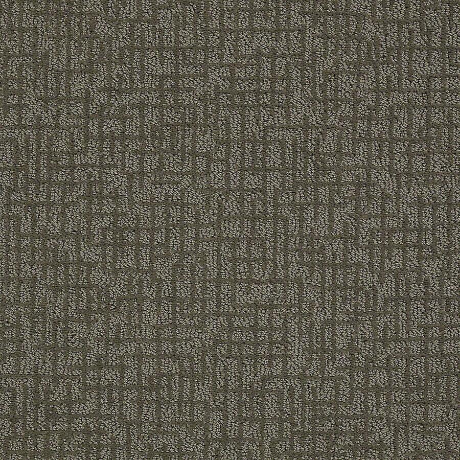 STAINMASTER PetProtect Bitzy 12-ft W x Cut-to-Length Paw Print Berber/Loop Interior Carpet