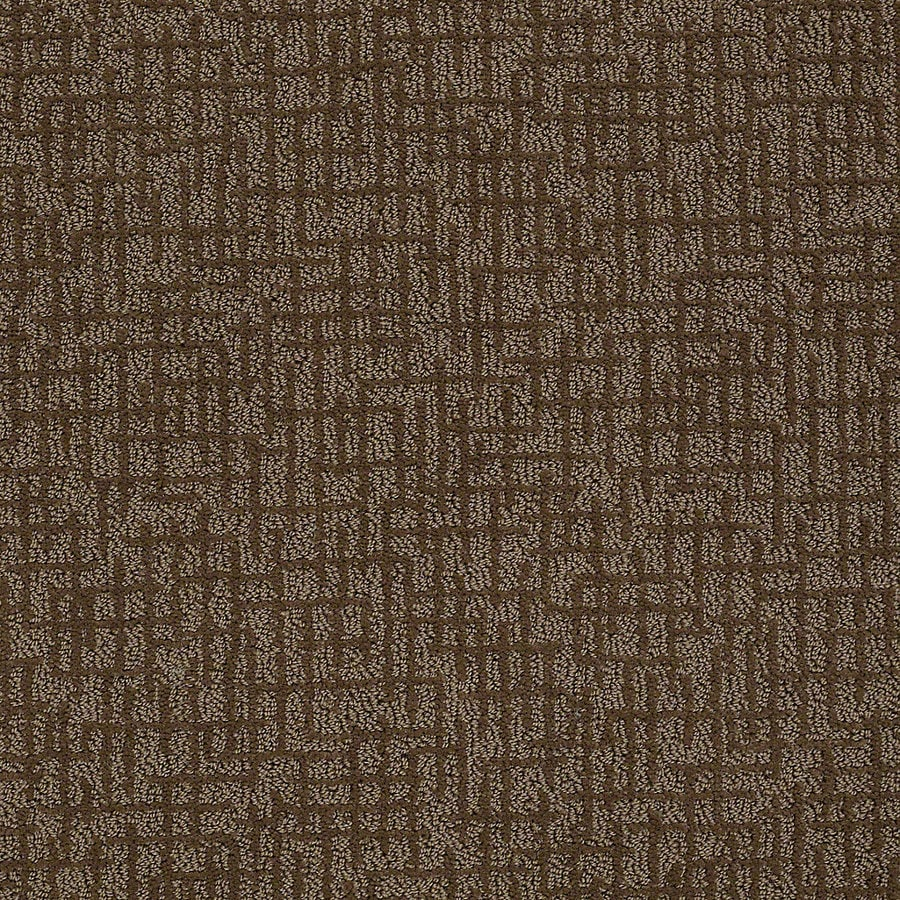 STAINMASTER PetProtect Bitzy 12-ft W x Cut-to-Length Coco Berber/Loop Interior Carpet