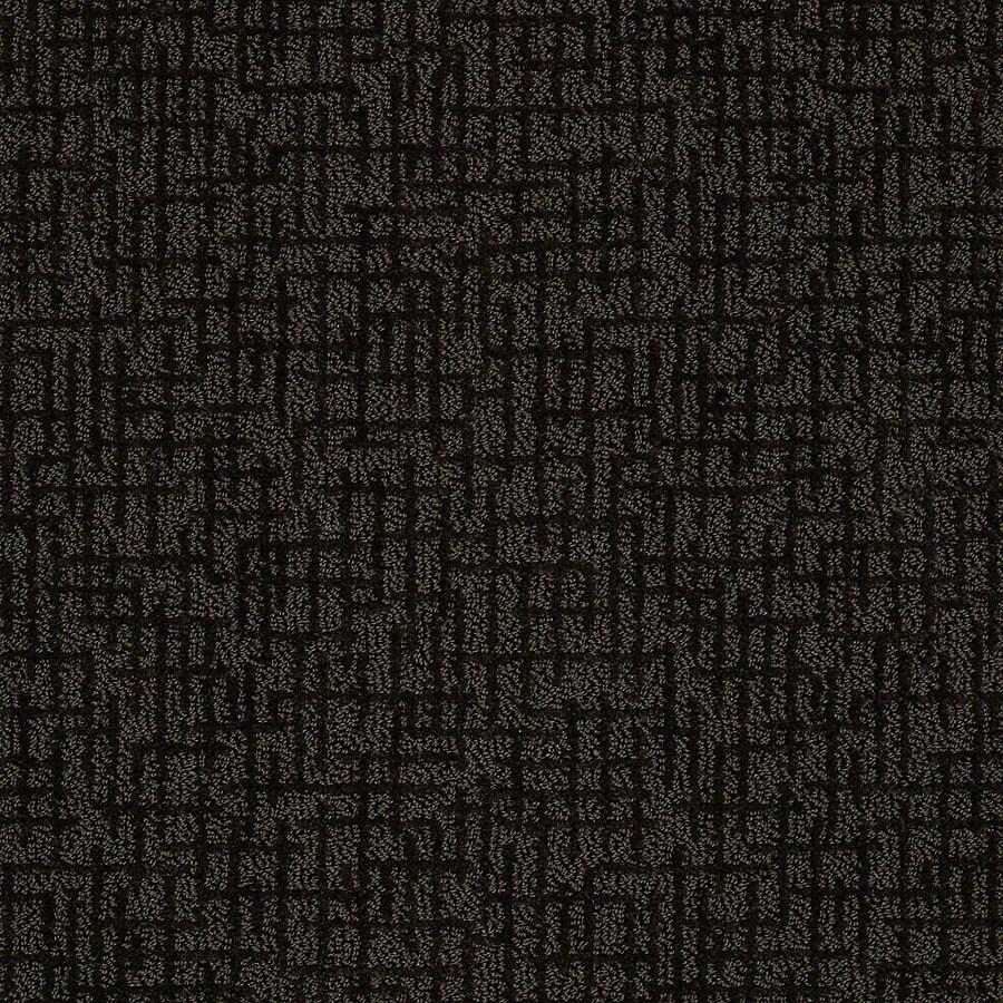 STAINMASTER PetProtect Bitzy Riley Berber Indoor Carpet