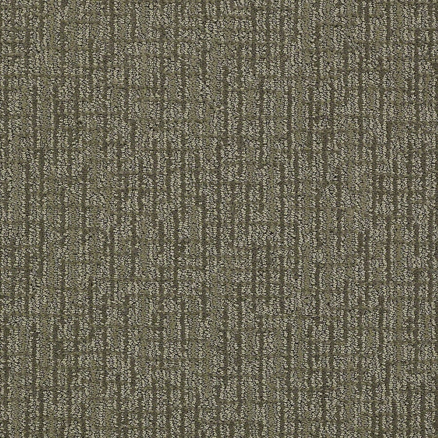 STAINMASTER PetProtect Bitzy 12-ft W x Cut-to-Length Husky Berber/Loop Interior Carpet