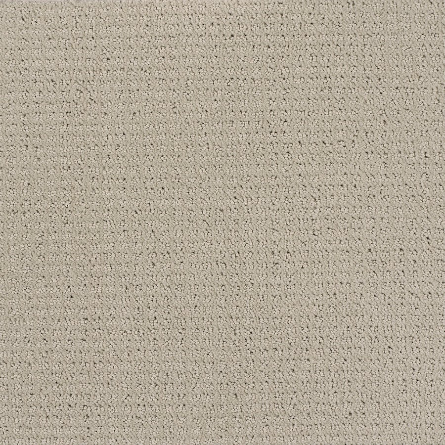 Shaw Cream/Beige/Almond Fashion Forward Indoor Carpet