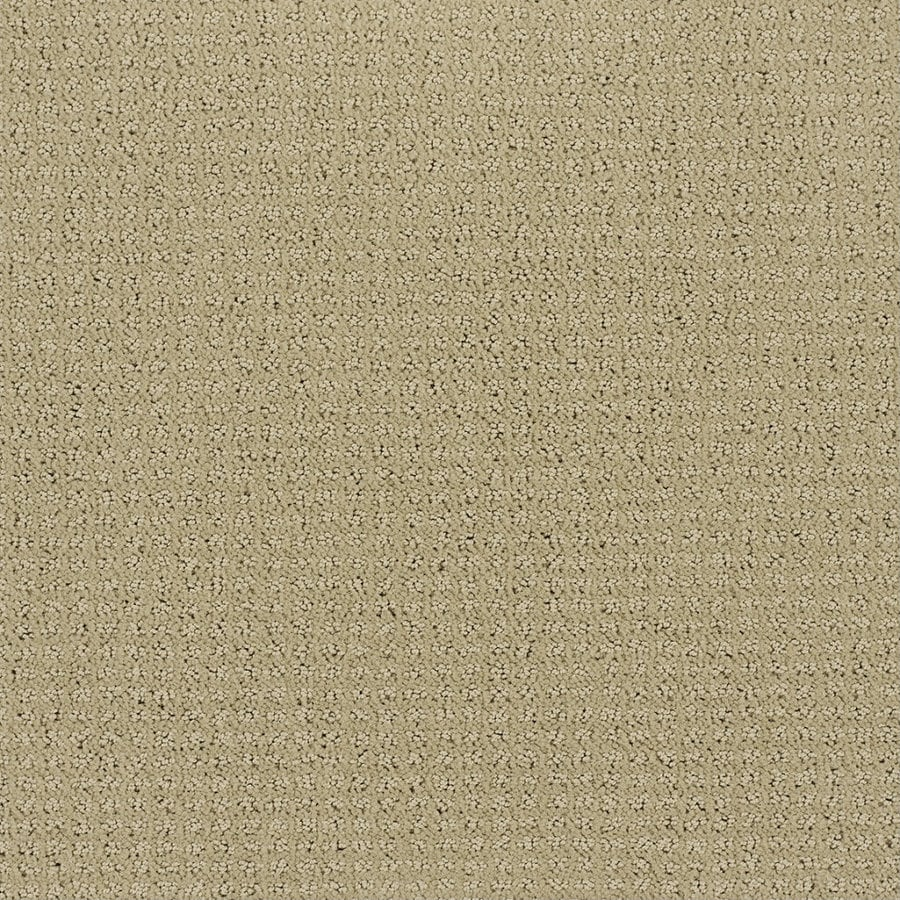 Shaw Brown/Tan Fashion Forward Indoor Carpet