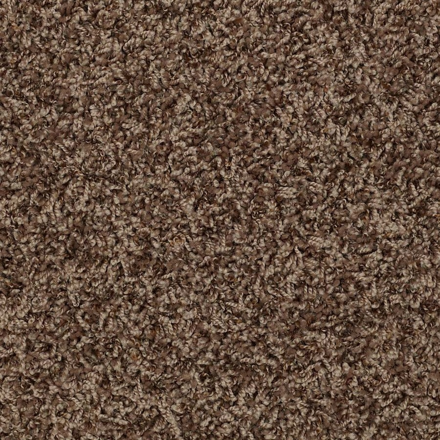 shop simple select brown sugar shag frieze interior carpet at. Black Bedroom Furniture Sets. Home Design Ideas