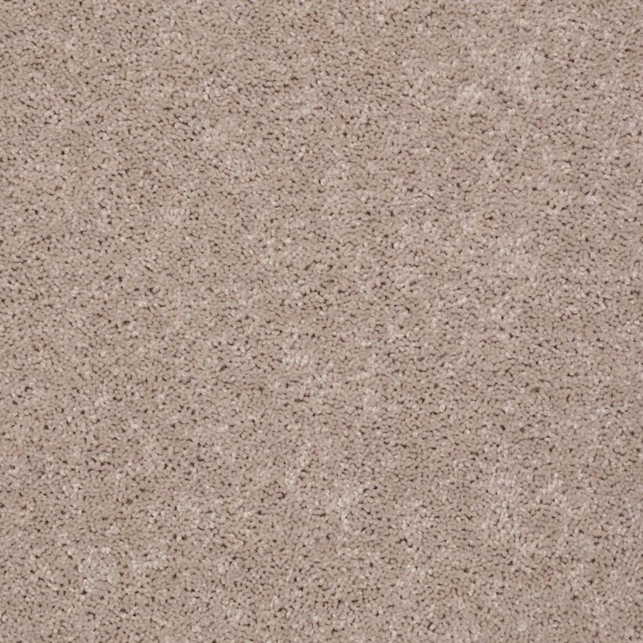Shaw Stock Carpet Flaxseed Textured Indoor Carpet