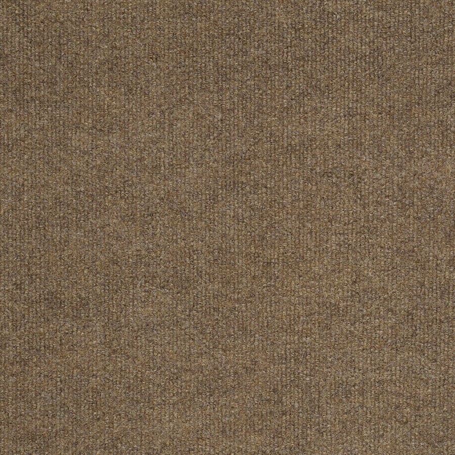 Shaw Home and Office Fawn Berber/Loop Interior/Exterior Carpet