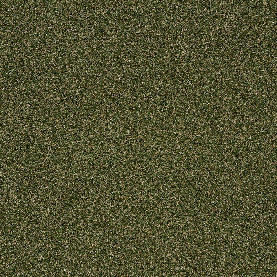 Shaw Home and Office Sea Grass Berber/Loop Interior/Exterior Carpet