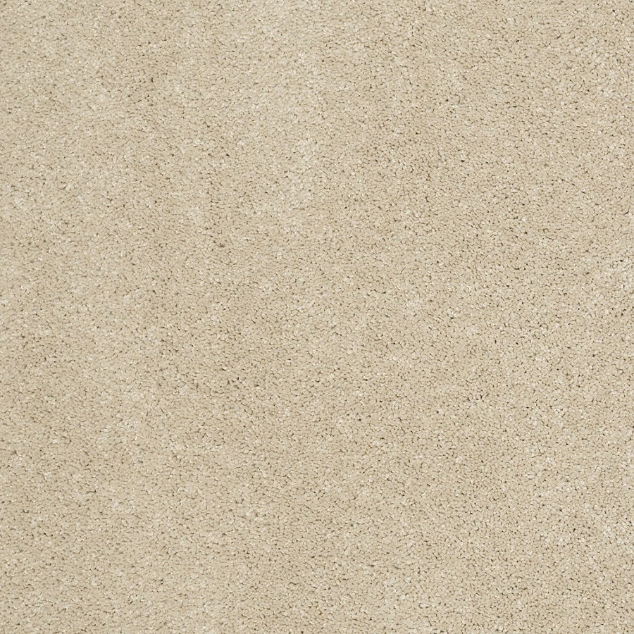 Shop Stainmaster Trusoft Luscious Ii S Sandstone Textured Indoor Carpet At Lowes Com