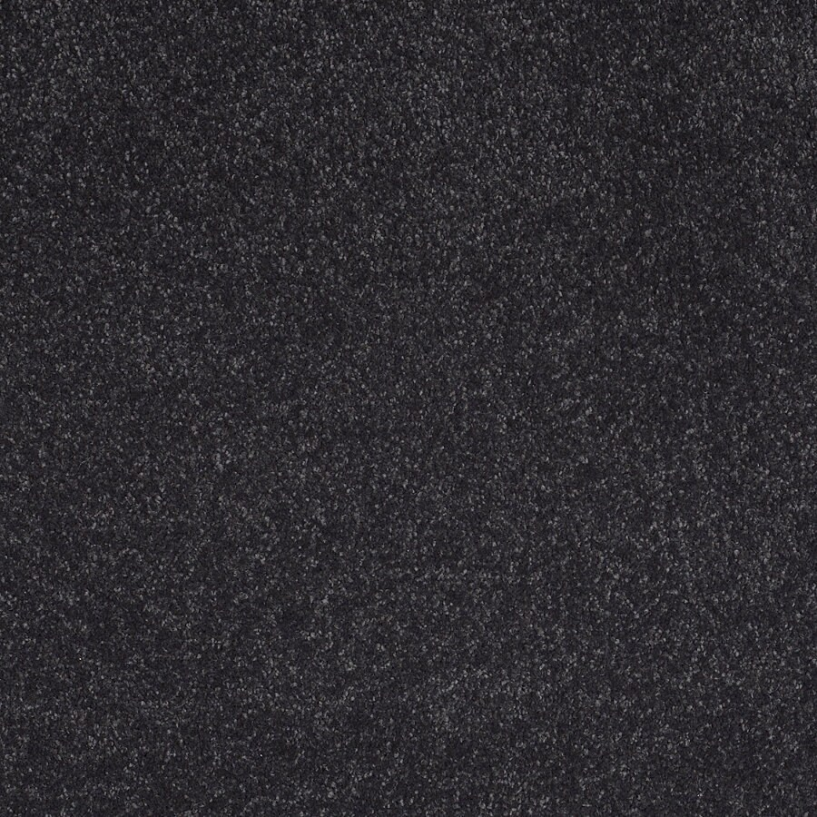STAINMASTER TruSoft Luscious II (S) After Midnight Textured Indoor Carpet