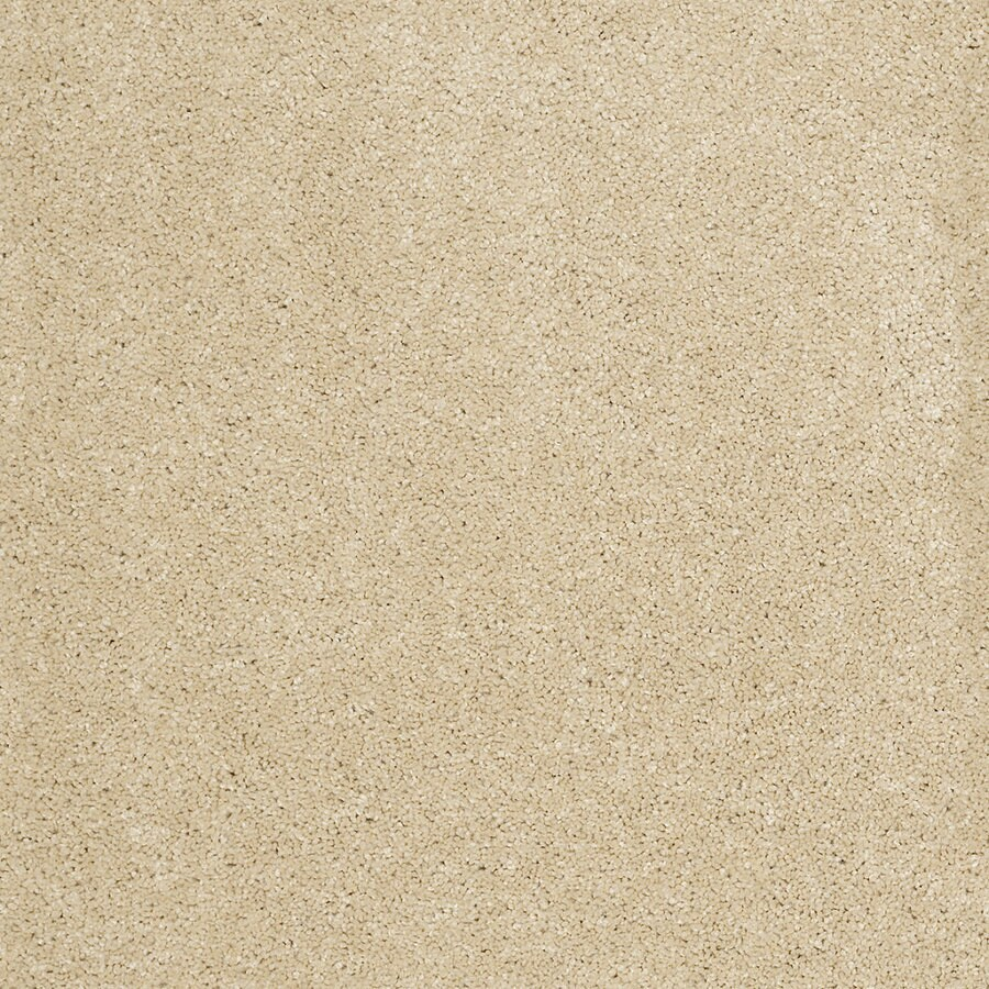 STAINMASTER Trusoft Luscious III Wheat Textured Indoor Carpet