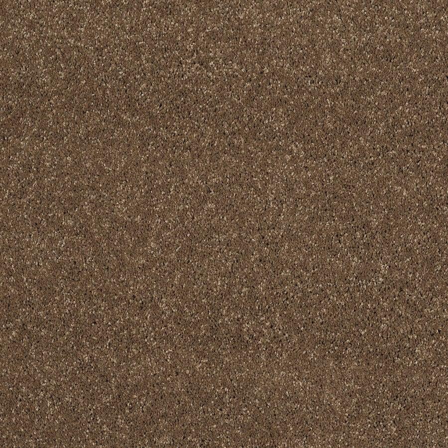 STAINMASTER Trusoft Luscious III Chestnut Textured Indoor Carpet