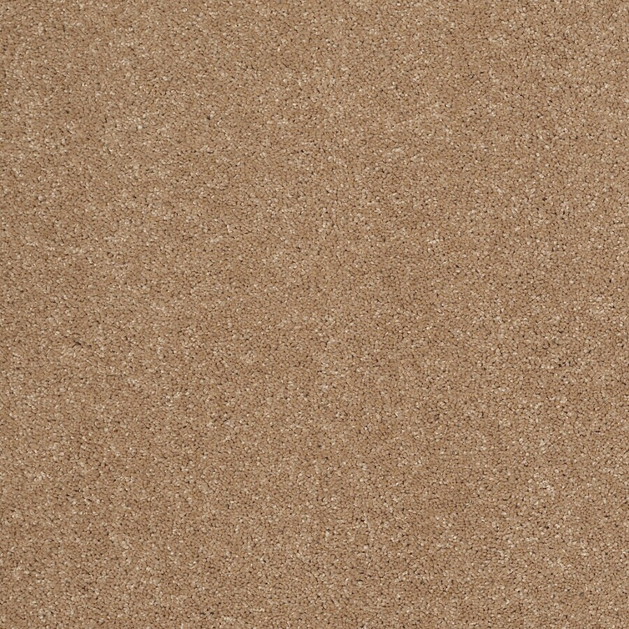 STAINMASTER Trusoft Luscious III Nutmeg Textured Indoor Carpet