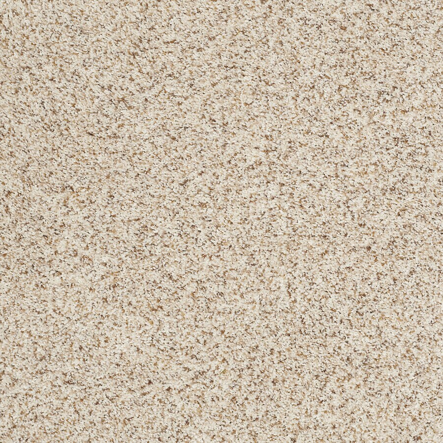 Shop STAINMASTER TruSoft Luscious II (T) Smooth Satin Textured Indoor Carpet at Lowes.com