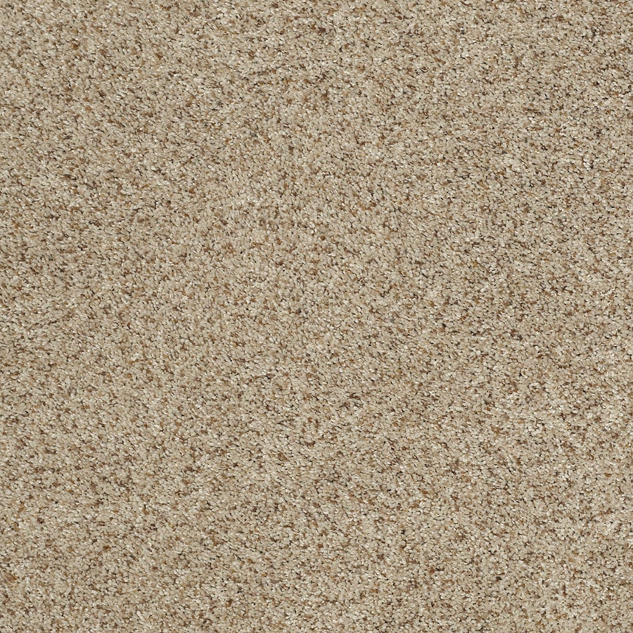 STAINMASTER TruSoft Luscious II (T) Fence Post Textured Indoor Carpet