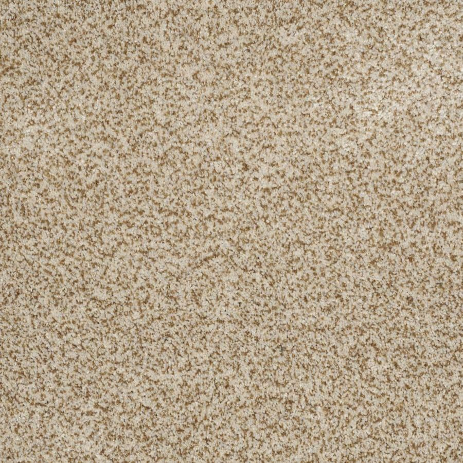 STAINMASTER Trusoft Private Oasis I Cappuccino Textured Interior Carpet