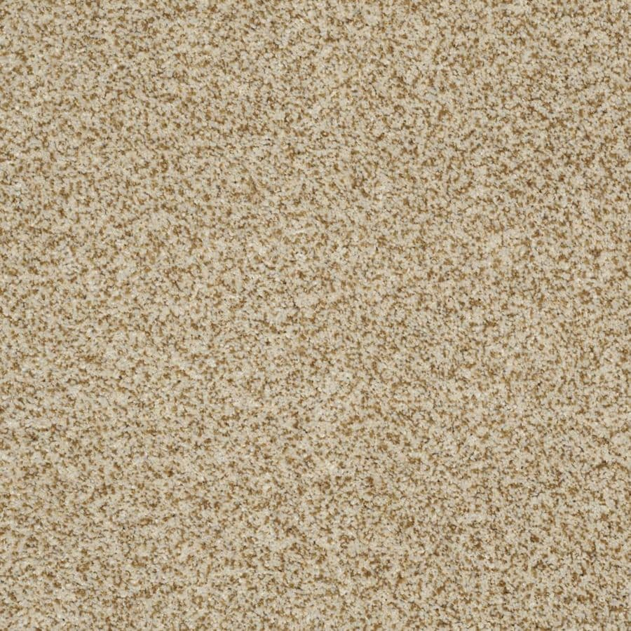 STAINMASTER Trusoft Private Oasis I Amber Textured Interior Carpet