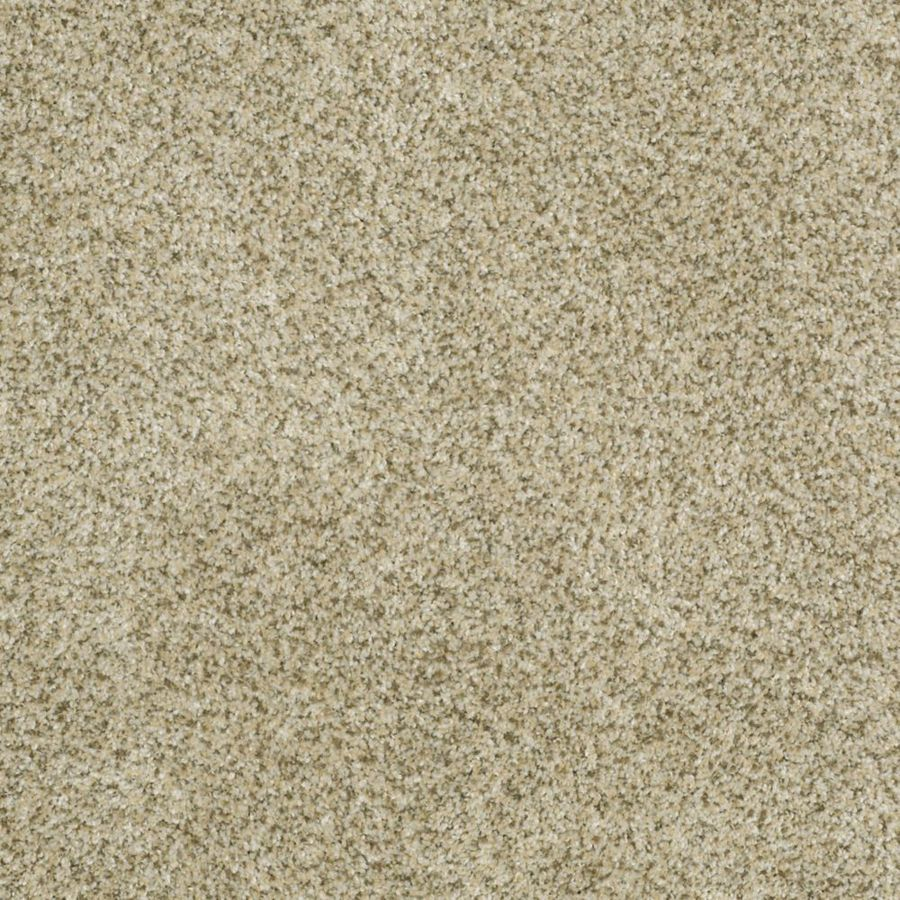 STAINMASTER TruSoft Private Oasis I Sea Foam Textured Indoor Carpet