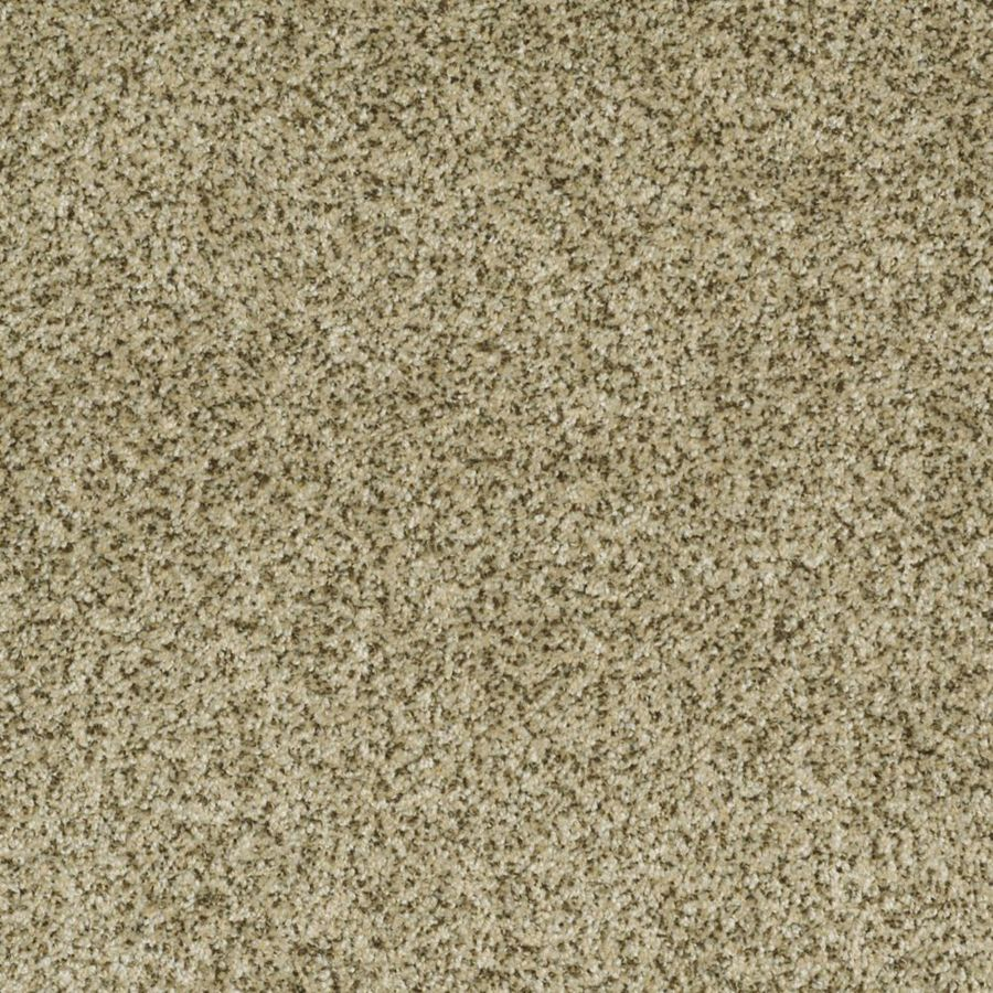 STAINMASTER Trusoft Private Oasis I Papillion Textured Interior Carpet