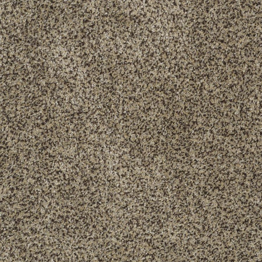 STAINMASTER TruSoft Private Oasis I Fantasia Textured Interior Carpet
