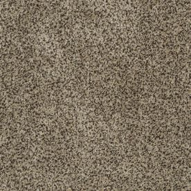 stainmaster petprotect carpet stainmaster trusoft private oasis i 12 ft w x cut to length fantasia