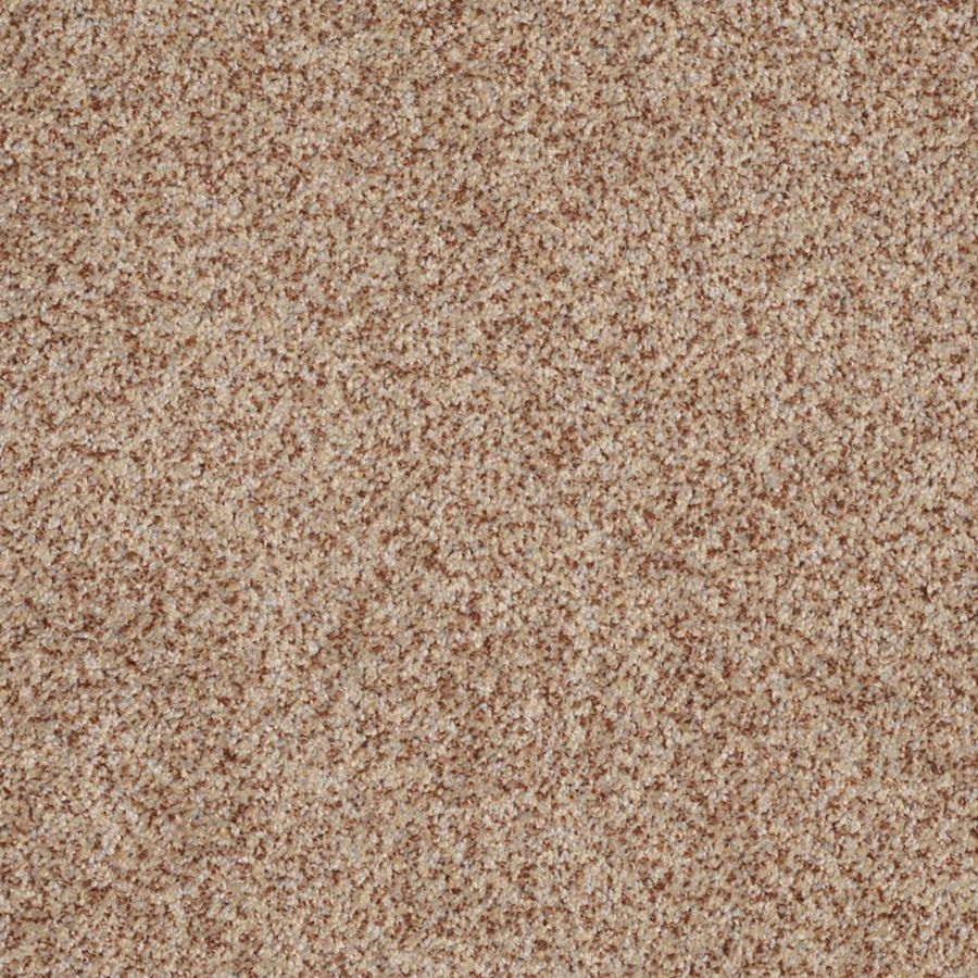 STAINMASTER TruSoft Private Oasis I 12-ft W x Cut-to-Length Florence Textured Interior Carpet