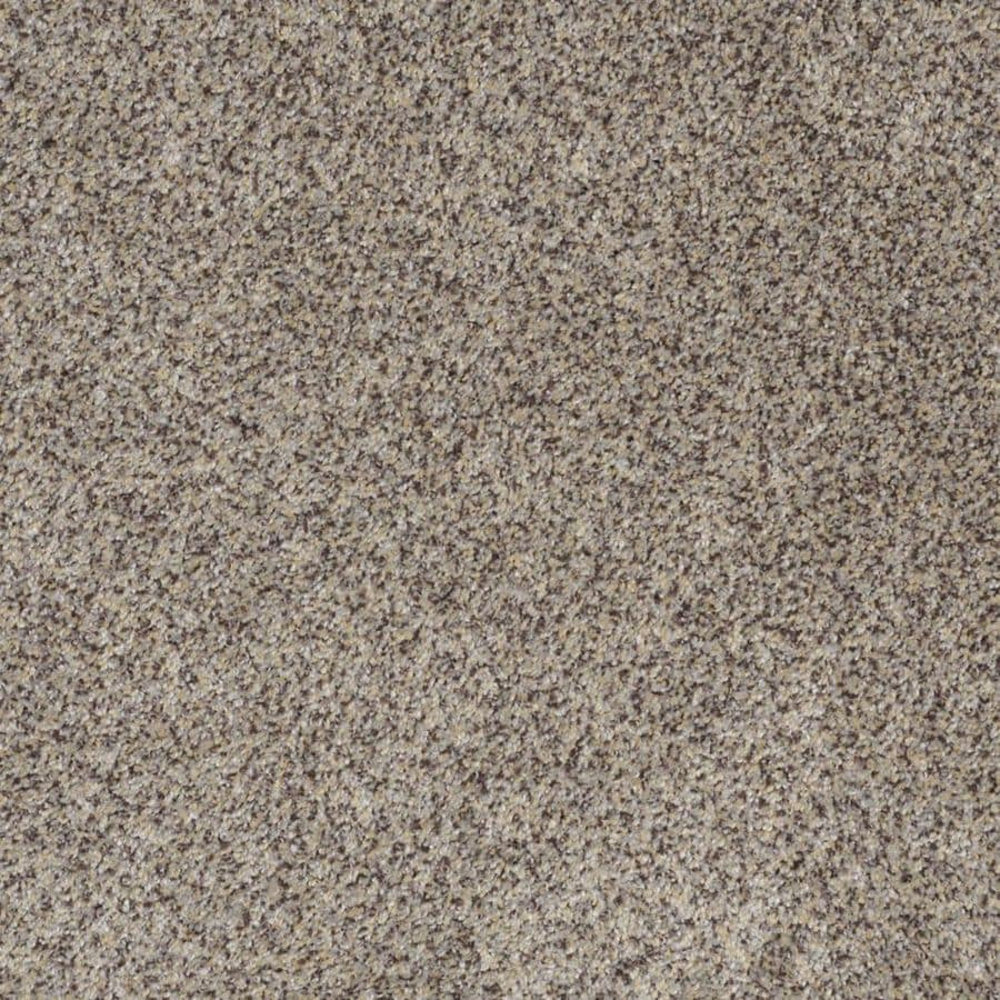 STAINMASTER TruSoft Private Oasis I Aztec Wave Textured Indoor Carpet