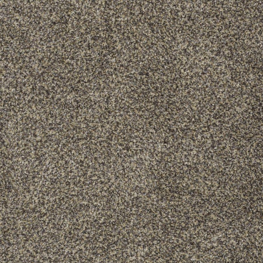 STAINMASTER TruSoft Private Oasis I 12-ft W x Cut-to-Length Dakota Textured Interior Carpet