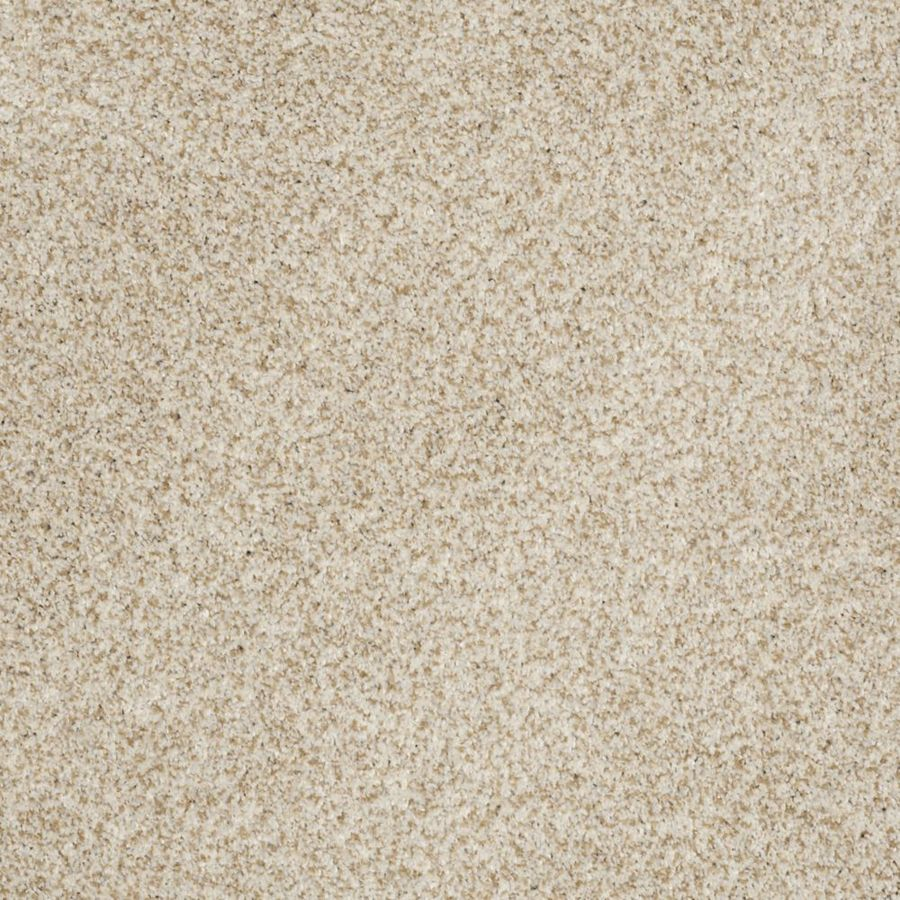 STAINMASTER Trusoft Private Oasis II Tranquility Textured Interior Carpet